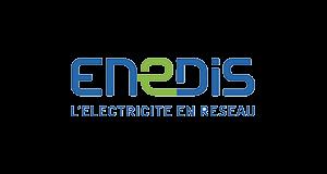 Logo Enedis | client GEDEAS, Entreprise Adaptée